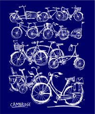 bicycles02thumbnavy
