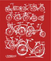 bicycles02thumbred